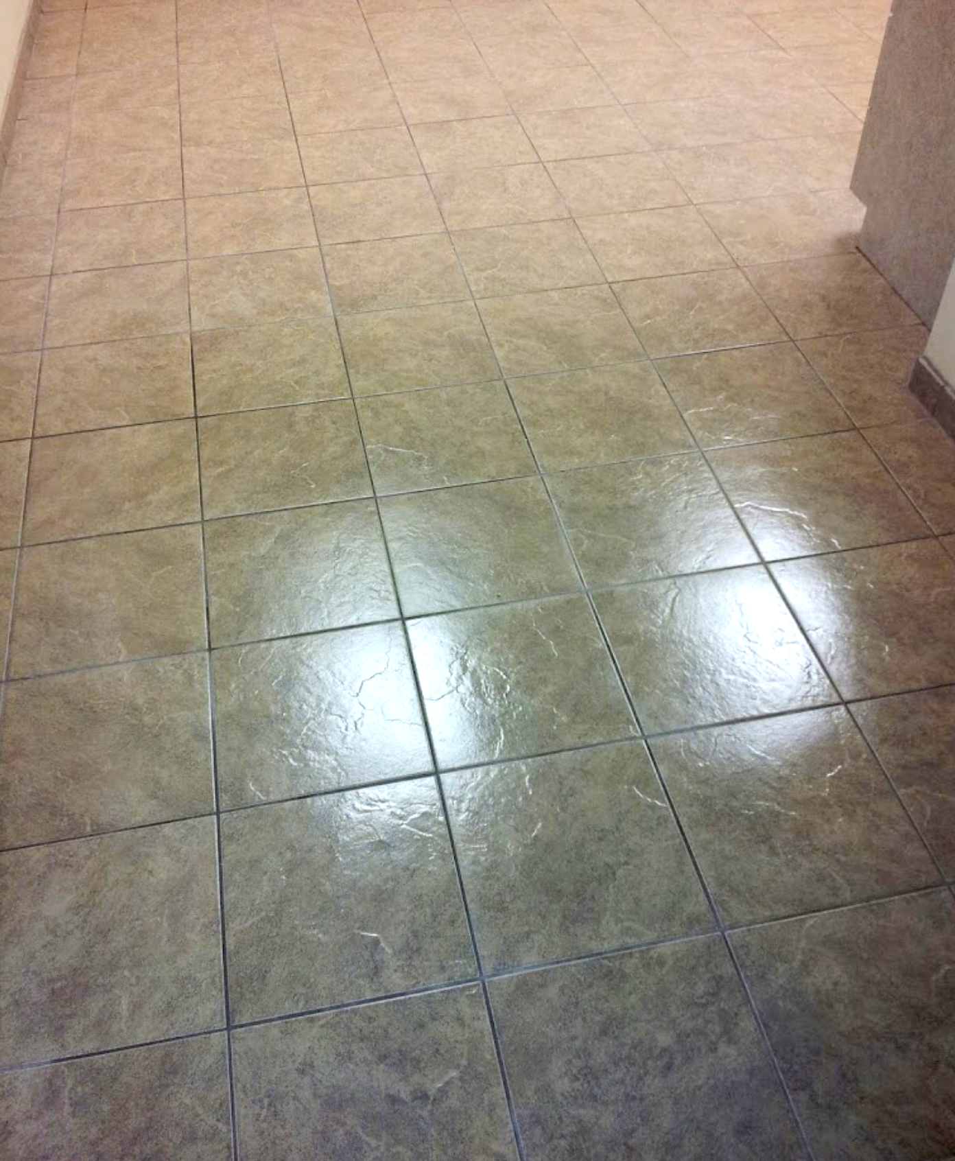Tile and Grout Shinging!